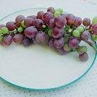 Cómo cultivar semillas de uvas