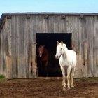 Cómo construir un cobertizo para caballos