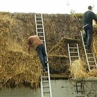 Cómo construir un techo de paja