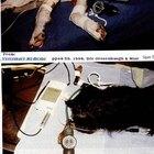 Cómo tomar la presión sanguínea de los perros