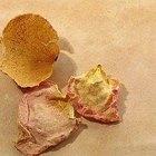 O que fazer com pétalas de rosas secas