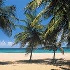 ¿Necesitas un pasaporte para viajar desde los EE.UU. hasta Puerto Rico?