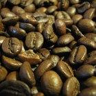 Alimentos que contienen cafeína