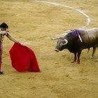 10 datos sobre las prendas de vestir en España