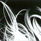 ¿Cuáles son las tres etapas de crecimiento del cabello?