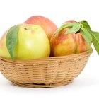 Cómo deshidratar frutas y vegetales utilizando el sol