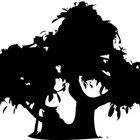 Cómo hacer un roble bonsái