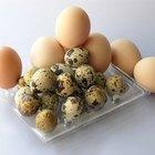 Cómo limpiar huevos frescos