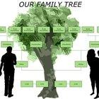 ¿Cómo hacer un árbol genealógico grande?