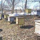 Cómo construir colmenas de abejas y estructuras de base
