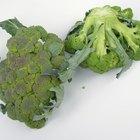 Cómo congelar crudos el brócoli y la coliflor