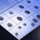 Cómo verificar información de antecedentes penales
