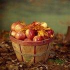 Cómo conservar puré de manzana