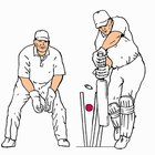 Types of Cricket Balls