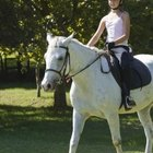 How to Get a Bronze Medal in Dressage