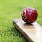 Sport of Cricket Information