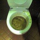 Quais são as causas de mofo em um vaso sanitário?