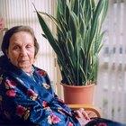 Babar em exceço: problema associado à medicação para tratar o mal de Alzheimer