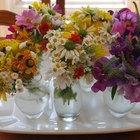 ¿Cuánto tiempo pueden vivir las flores frescas sin agua?