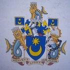 Significado del color usado en el escudo de armas