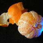 Enfermedades de los árboles de mandarina