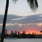 Actividades románticas para hacer en Miami