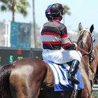 Cómo calcular las apuestas de un caballo ganador