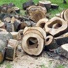 Consejos para quemar malezas y troncos