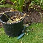 Herbicida hecho en casa para grandes superficies