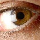 Quais cores de olhos e cabelos são dominantes?