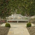 Small walled garden ideas