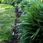 How to use lawn edging bender board