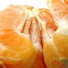 Cómo germinar las semillas de mandarina