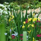 Como calcular a quantidade terra para um canteiro de flores