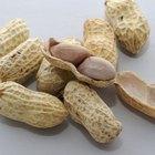 Uses of Peanut Shells