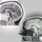 Quais são os quatro objetivos da Psicologia?