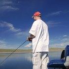 Qué carnada utilizar para pescar amia calva
