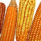 Definición de cultivos básicos