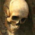Cómo hacer silbatos aztecas de la muerte