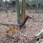 How to Grow Dinosaur Egg Pets