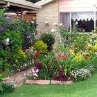 Planes para un jardín pequeño en el patio trasero