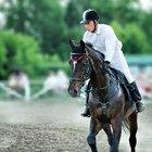 Enfermedades y problemas de los cascos de los caballos