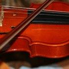 Tipos de violino