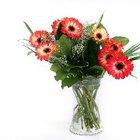 El mejor método para transportar flores frescas