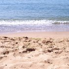 Playas cerca de Raleigh, Carolina del Norte