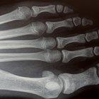 Quais os deveres dos técnicos e tecnólogos em radiologia?