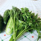 Green vegetables are rich in vitamin K1.