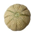 Cuándo cosechar el melón