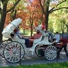 Tipos de carruagens puxadas por cavalos
