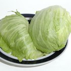 Crisphead lettuces, such as iceberg, tend to have minimal nutritional value.